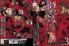 AMS-067 性奴凌辱 3
